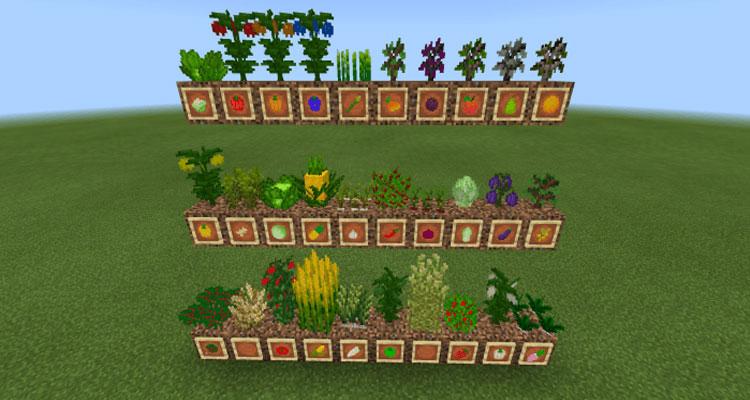 Crops ++ Mod 1.12.2/1.7.10