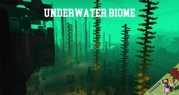 Underwater Biome Mod 1.15.2/1.14.4