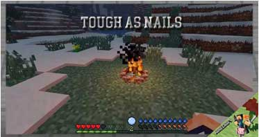 Tough As Nails Mod 1.16.5/1.12.2/1.10.2 For Minecraft