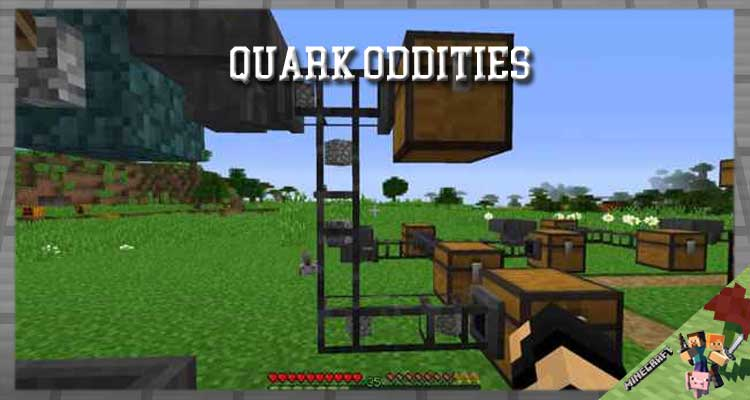 Quark Oddities Mod 1.16.5/1.15.2/1.12.2 For Minecraft