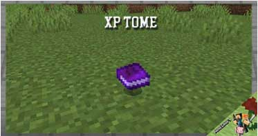XP Tome Mod 1.16.5/1.15.2/1.12.2 For Minecraft